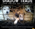 Shadow Trade Documentary