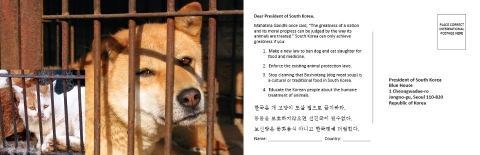 Postcard Addressed to the President of Korea!