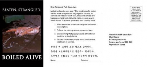 Mail these postcards to the President of Korea