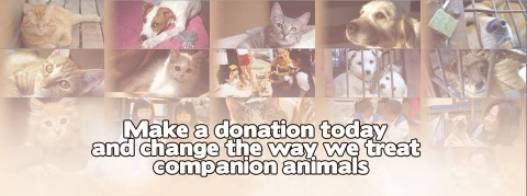Make a donation today and change the way we treat our companion animals.  Your s…