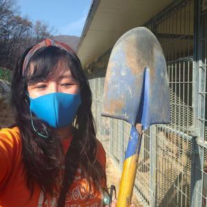 Aulia, Daejun Volunteer Shelter coordinator